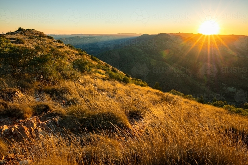 Sunset looking over golden coloured grasses from a high vantage point in the West MacDonnell Ranges, - Australian Stock Image
