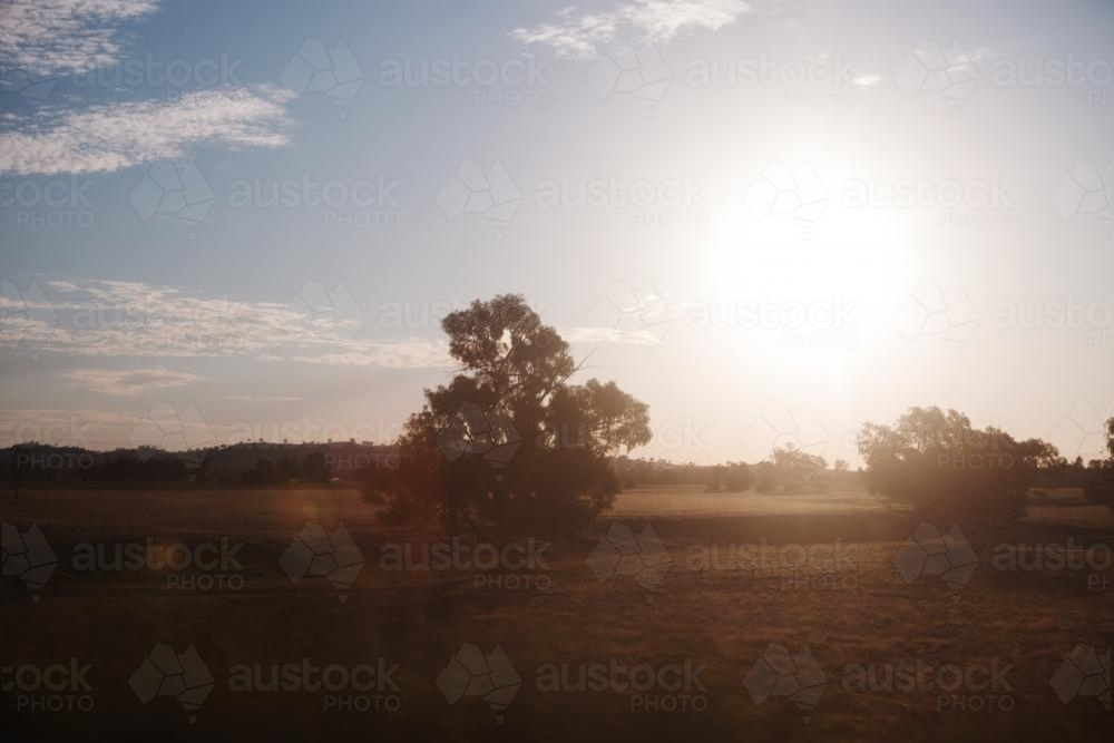 Sunset on the road in country setting - Australian Stock Image