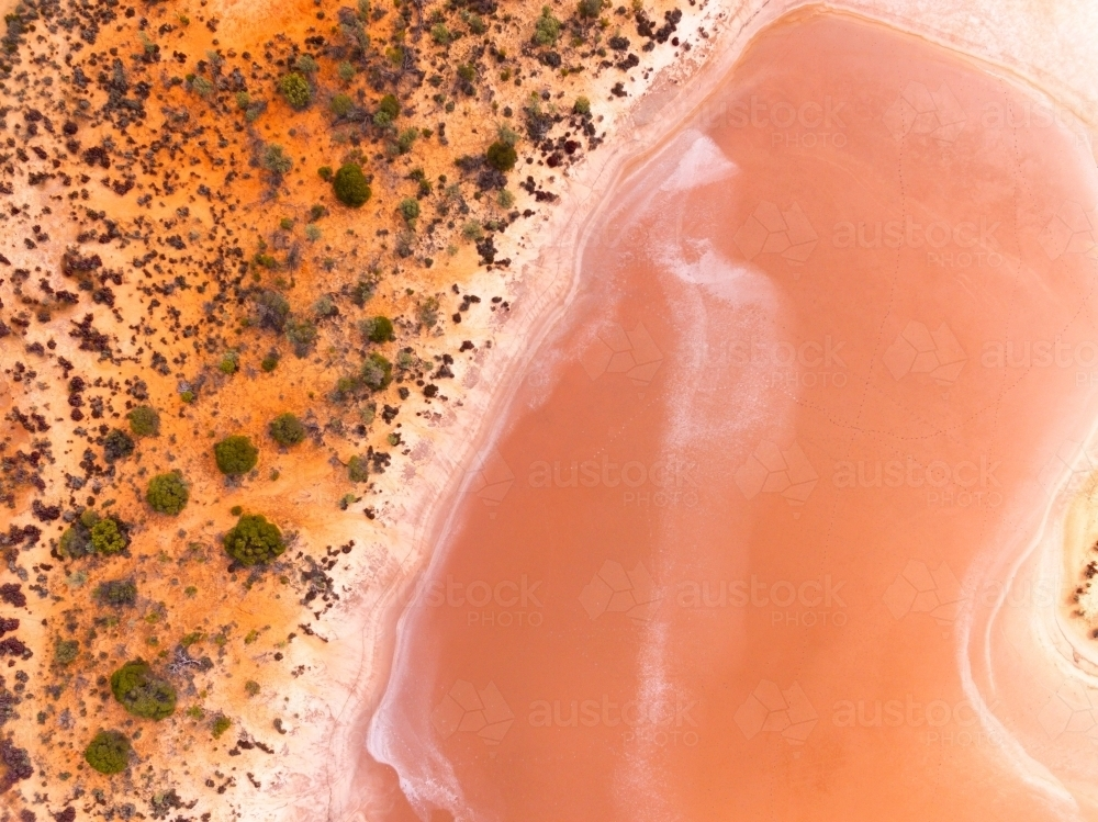 The shoreline of Lake Baladjie seen from above - Australian Stock Image