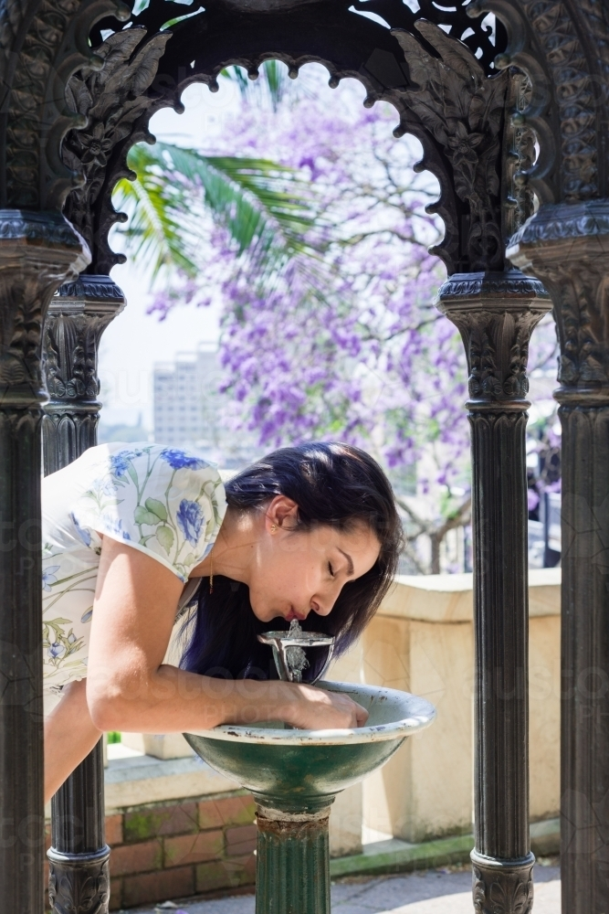 woman drinking from water fountain, with a background of jacarandas in bloom - Australian Stock Image