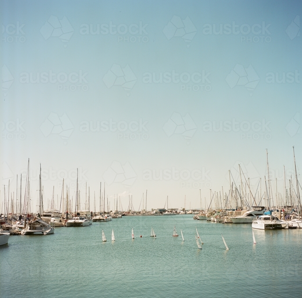 Yachts in the Harbour - Australian Stock Image