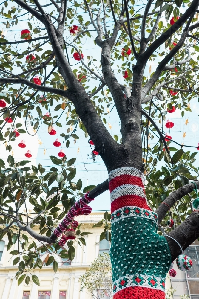Christmas Yarn Bombing.Image Of Yarn Bombed Christmas Decorations On A Tree
