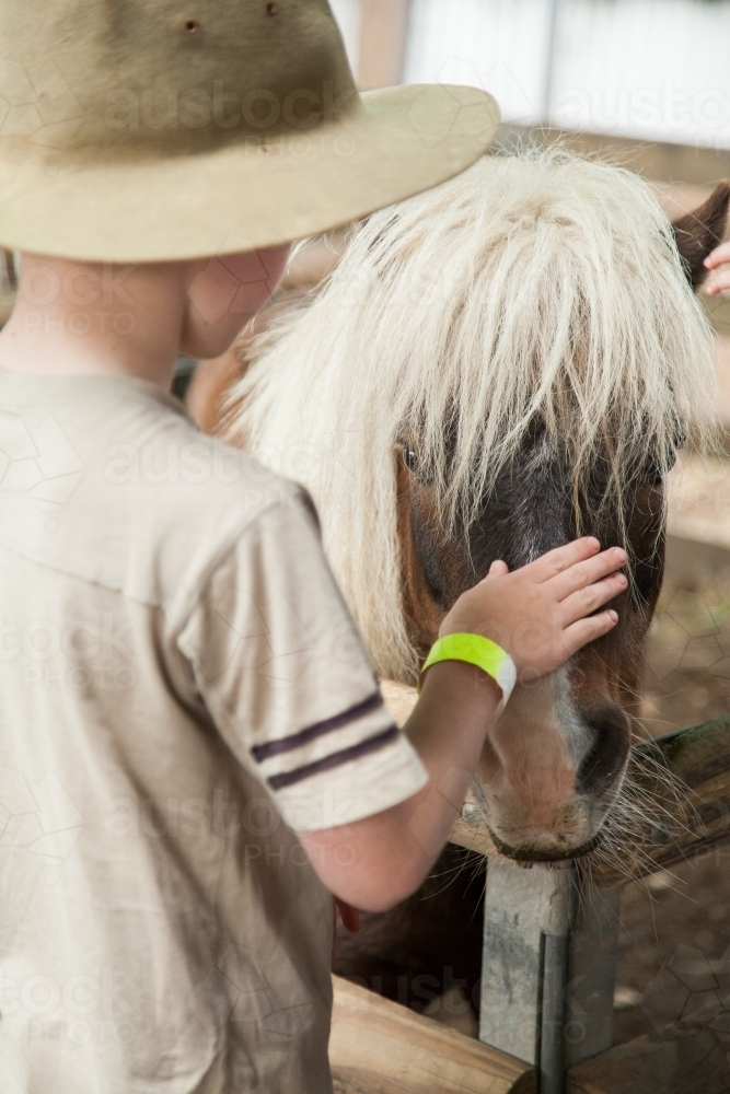 Young boy patting a shetland pony at the show - Australian Stock Image