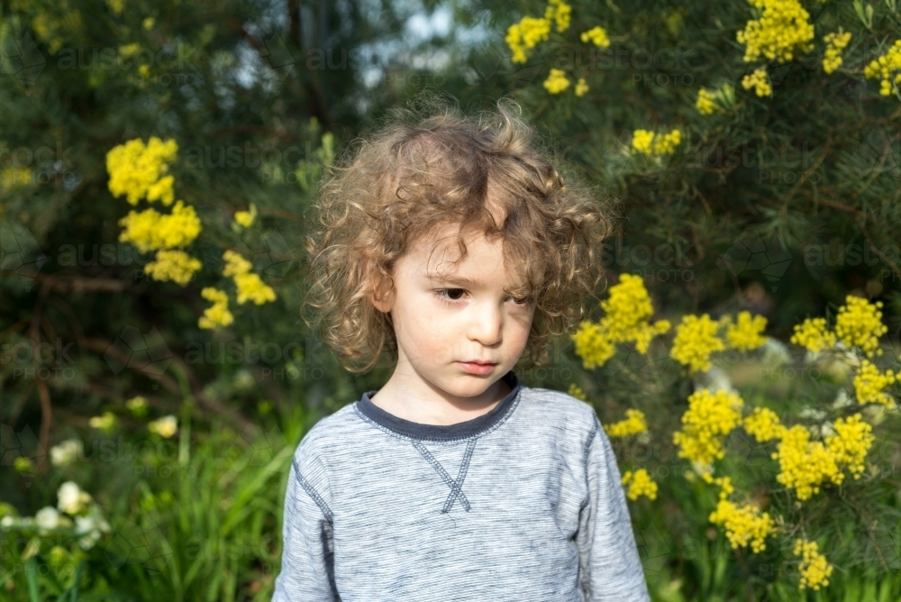 Young boy sitting in a garden with wattle trees - Australian Stock Image