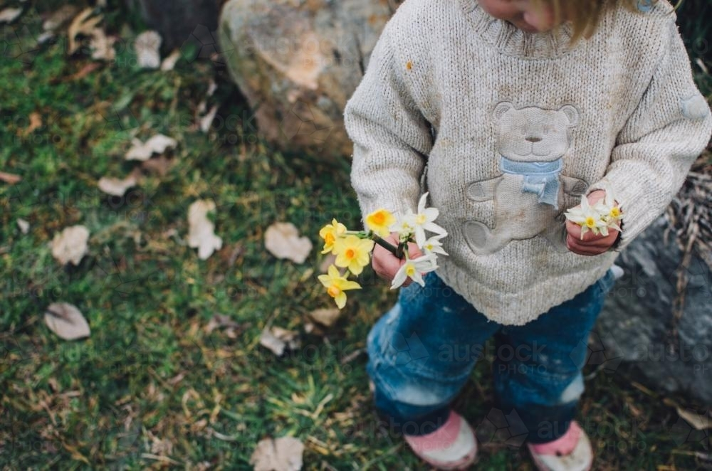 Young child holding flowers - Australian Stock Image