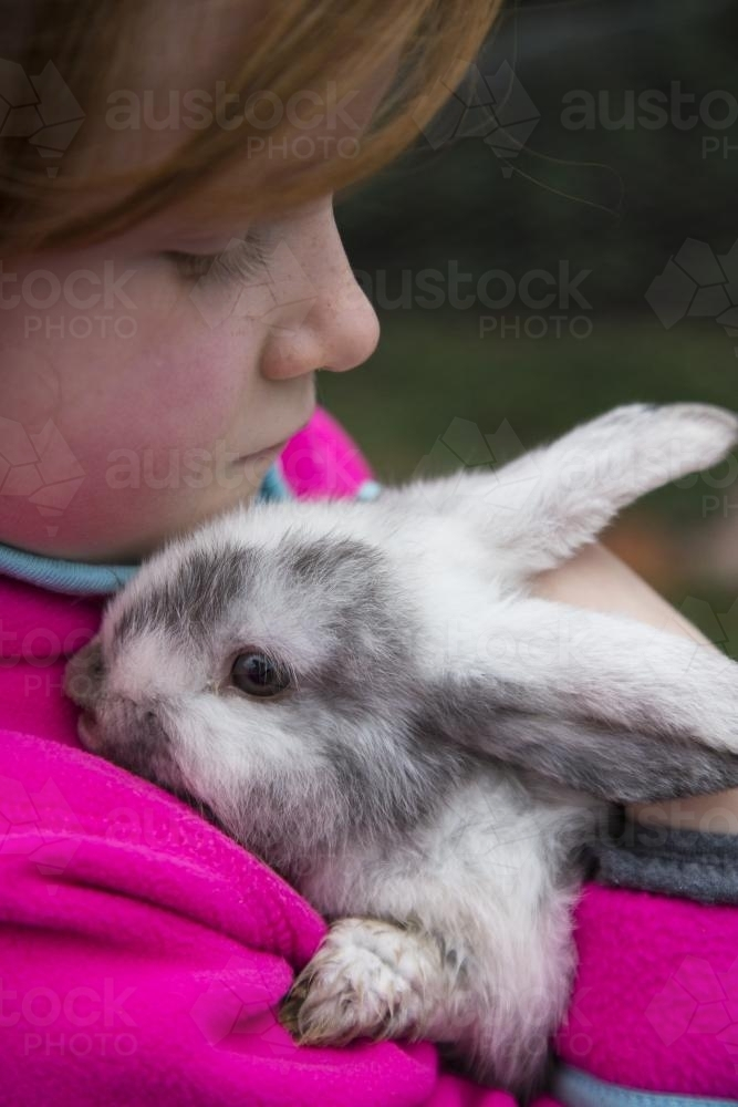 Young girl holding a grey and white mini lop rabbit - Australian Stock Image