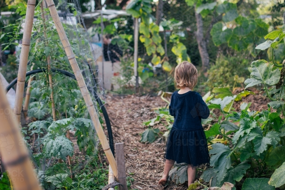 Young girl playing in permaculture garden - Australian Stock Image