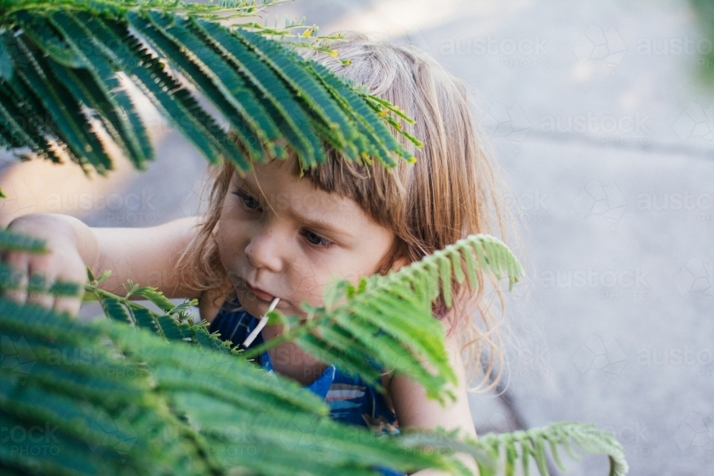 Young girl playing with leaves - Australian Stock Image