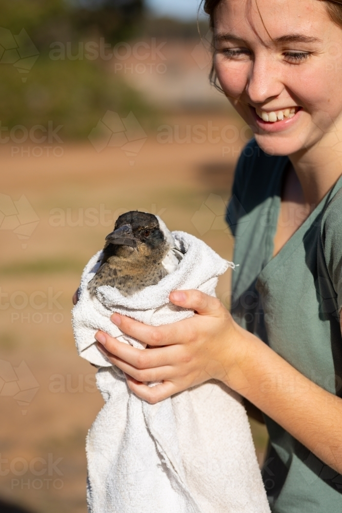 young woman holding injured bird in old towel - Australian Stock Image
