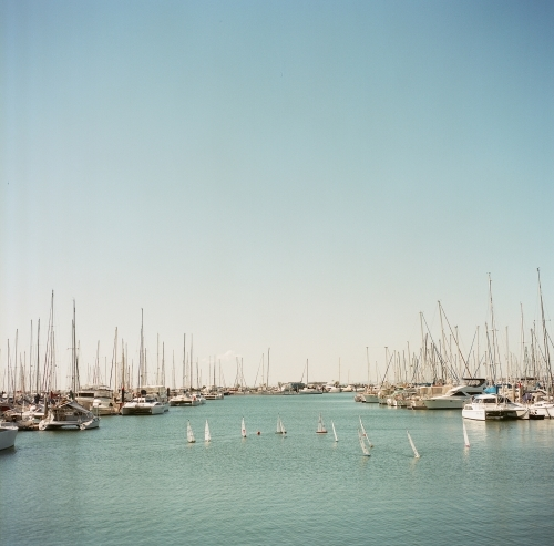 Yachts in the Harbour