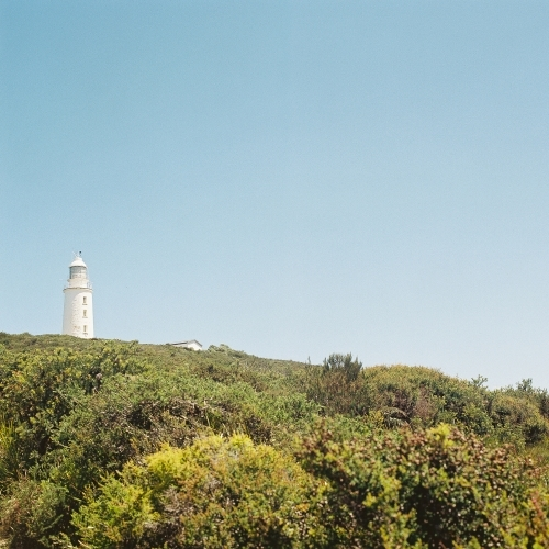 Lighthouse with green scrub and blue sky
