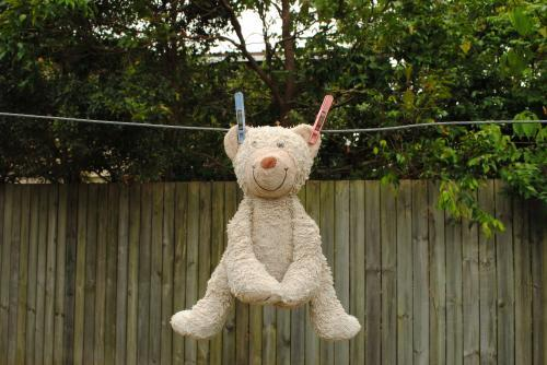 Teddy bear hanging on a washing line