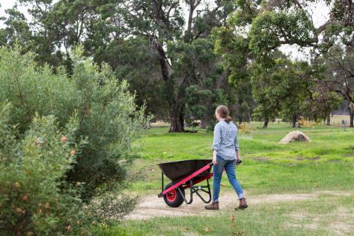 Young woman pushing a wheelbarrow in a yard with green grass