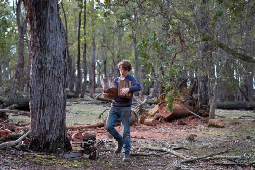 Teenage boy collecting firewood in the bush