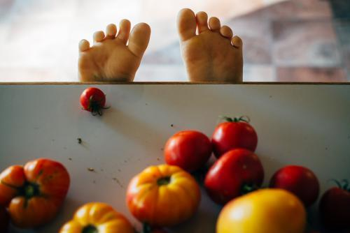 Childs toes on a bench with tomatoes in foreground