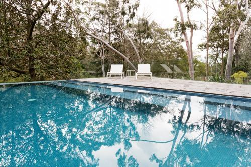 Stunning blue tiled infinity swimming pool in Australian home with bush garden setting