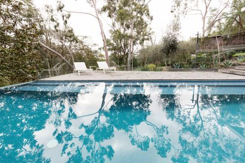 Large fully tiled swimming pool with reflections of the gum trees