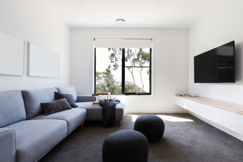 Modern living tv room in a contemporary home with gum tree outlook