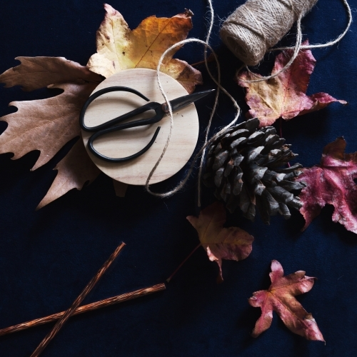 Collection of autumn inspirational objects on dark navy background