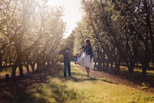 A Boy And Girl Swinging Their Little Sister In An Orchard