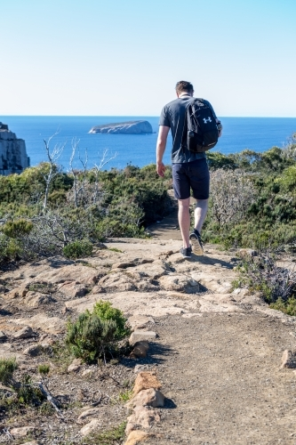 A man walking along the track to Tasmania's Cape Hauy Three Capes Track in the Tasman Peninsula