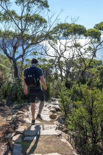 A man walking dow the track to Tasmania's Cape Hauy on the Three Capes Track in the Tasman Peninsula
