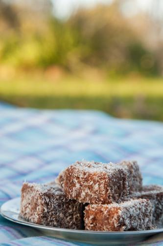 A pile of lamingtons on a plate on a picnic rug
