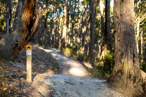 A sign post marks the way along a gravel walking track in amongst an open dry eucalyptus forest