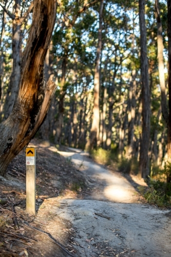 A sign post marks the way along a gravel walking track in amongst an open dry eucalyptus forest.