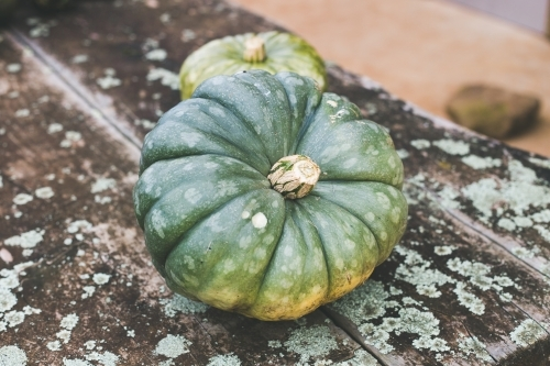 A small green pumpkin sitting on a weathered wooden table