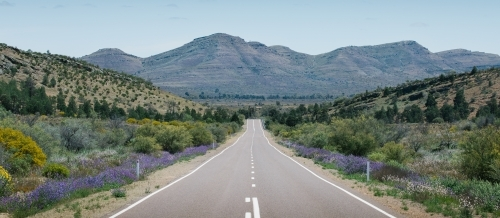 A straight tarred road leading through the Flinders Ranges