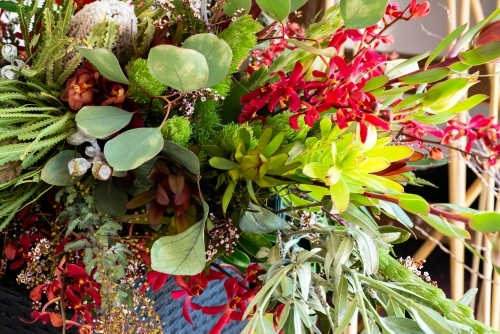 A stunning green and red arrangement of native and exotic blooms and foliage