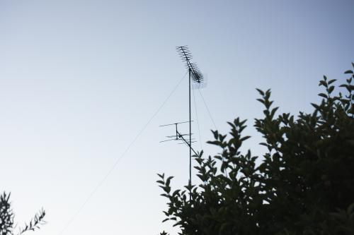 A television aerial against the sky with a tree silhouette