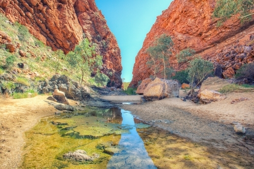 A waterhole at Simpsons Gap