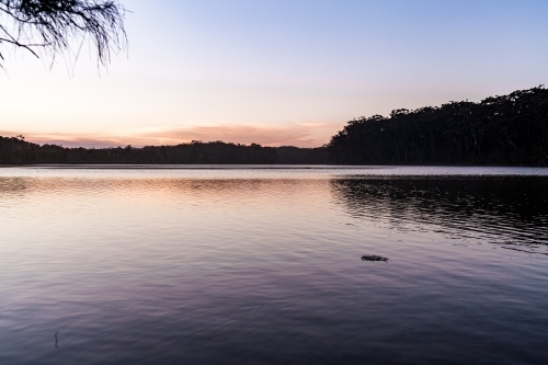 A wide view of a large smooth lake surrounded by the silhouettes of trees at dusk