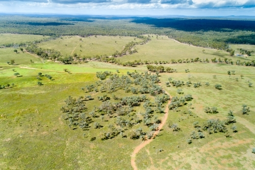 Aerial view of a farm paddock.