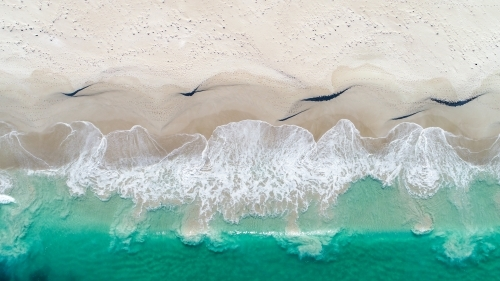 An aerial view of a wave about to crash on the shore