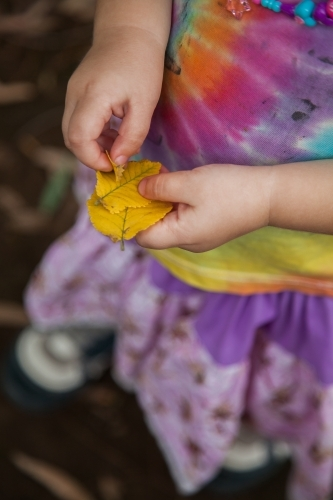 Little girl holding yellow autumn leaves in her hand