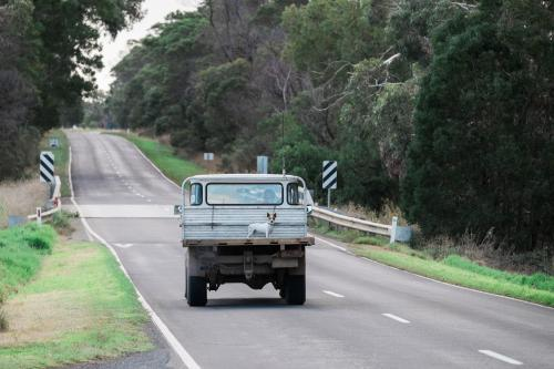 Small farm dog travelling on the back of a ute on a country road