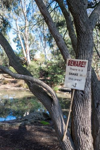 Beware of Snakes sign by lake