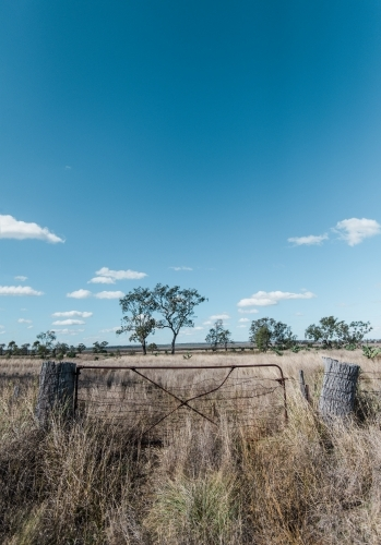 Fence against dry grass and sky