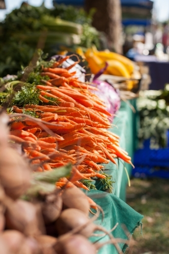 Baby carrots at local farmers market