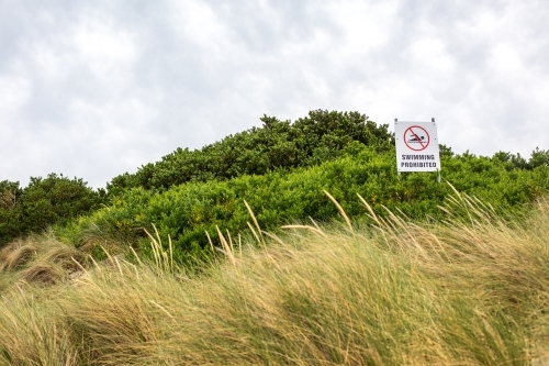Beach signs in the dune grass