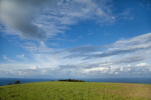 Green hilltop with ocean horizon and big sky