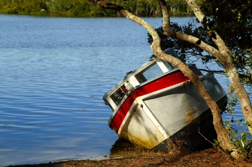 Small boat under trees on the bank of a river.