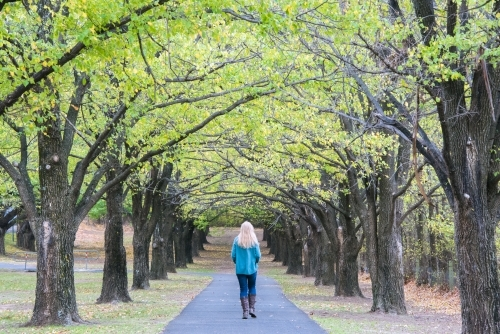 Blonde woman walks away down an avenue of autumn green and yellow trees.