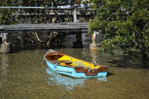 Blue boat in shallow water with wooden bridge