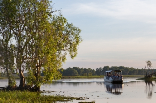 Boast cruise on the yellow water river, kakadu