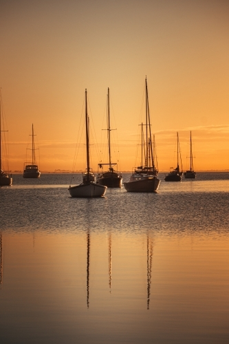 Boats Docked at the Geelong Waterfront before Sunrise
