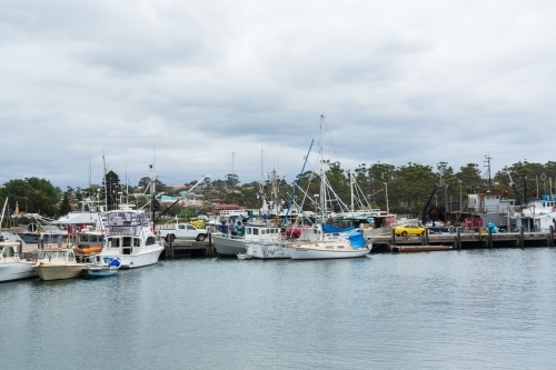 Boats in the Ulladulla harbour